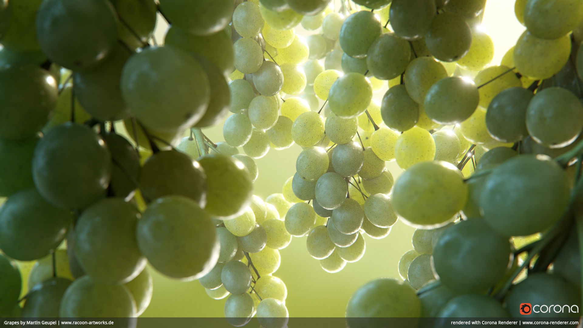 Grapes by Martin Geupel