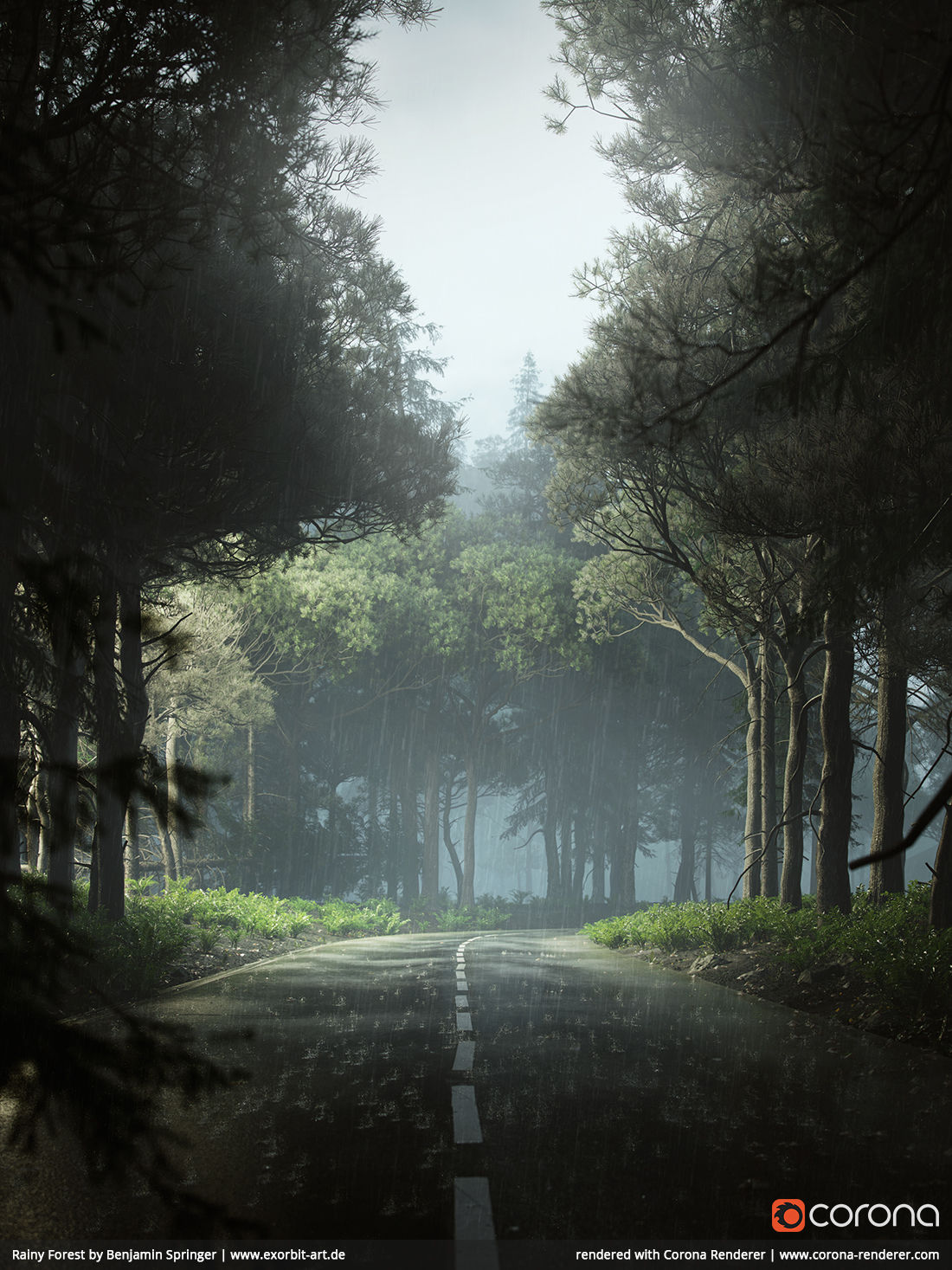 Rainy Forest by Benjamin Springer, EXORBITART - Cinema 4D
